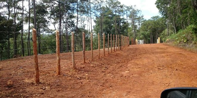 Medio Ambiente detiene crimen ecológico en zona montañosa de Jarabacoa