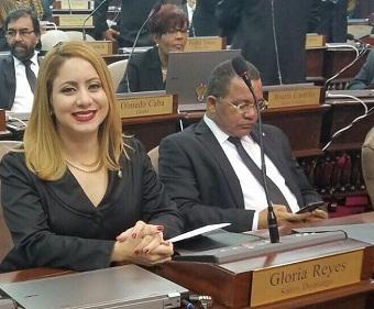 Diputada Gloria Reyes resta credibilidad a la rendición de cuentas