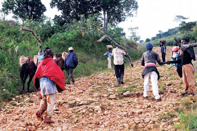 Pedernales agoniza, haitianos, Alcarrizos News Diario Digital