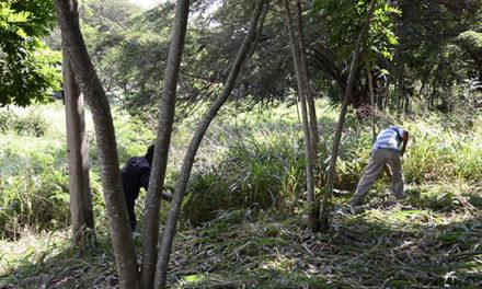 Medio Ambiente agiliza creación de dos grandes áreas ecológicas en Santiago