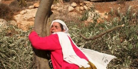 Nos están pidiendo un milagro por Palestina