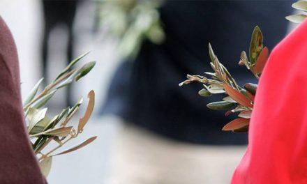 9 cosas que debes saber sobre el Domingo de Ramos