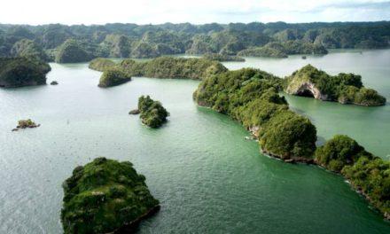 Medio Ambiente libera de costo entrada a áreas protegidas los días 3, 4 y 5 de Junio