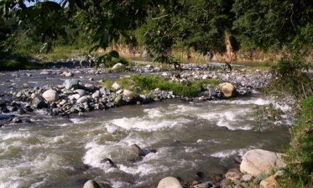 Propietarios de finca intentan abrir camino en el río Yaque del Norte