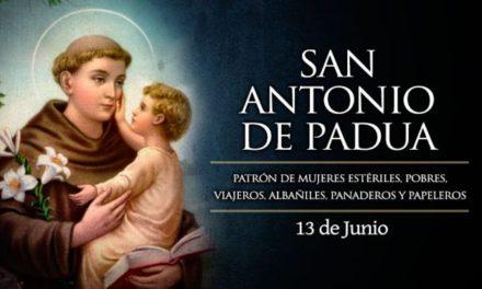 """13 de junio: San Antonio de Padua, el """"santo de todo el mundo"""""""
