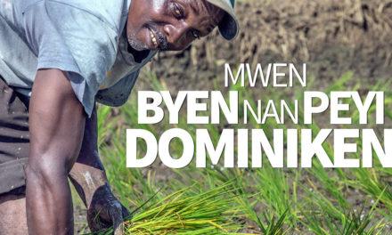 """Retiran publicidad fusionista """"Mwen byen nan peyi Dominiken"""" del portal de la Presidencia"""