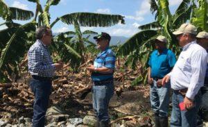 Estiman pérdidas millonarias en agro; inundaciones siguen causando daños, Alcarrizos News Diario Digital