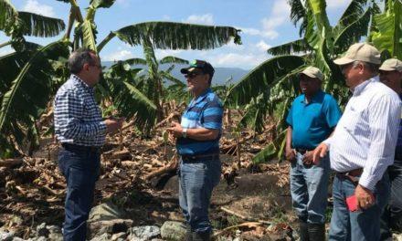 Estiman pérdidas millonarias en agro; inundaciones siguen causando daños