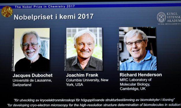 La técnica para ver biomoléculas en 3D gana el Nobel de Química