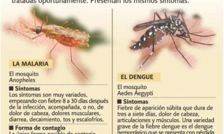 El dengue y la malaria vuelven a azotar: se reportan casos de malaria en Los Alcarrizos