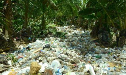 Toneladas de basuras arropan Arroyo Lebrón que desemboca en río Isabela y bordea los municipios Pedro Brand y Los Alcarrizos