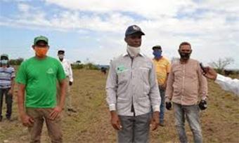 Ganaderos de Los Alcarrizos denuncian muertes de reses por falta de comida y agua