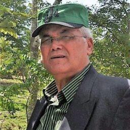 José Bujosa Miéses